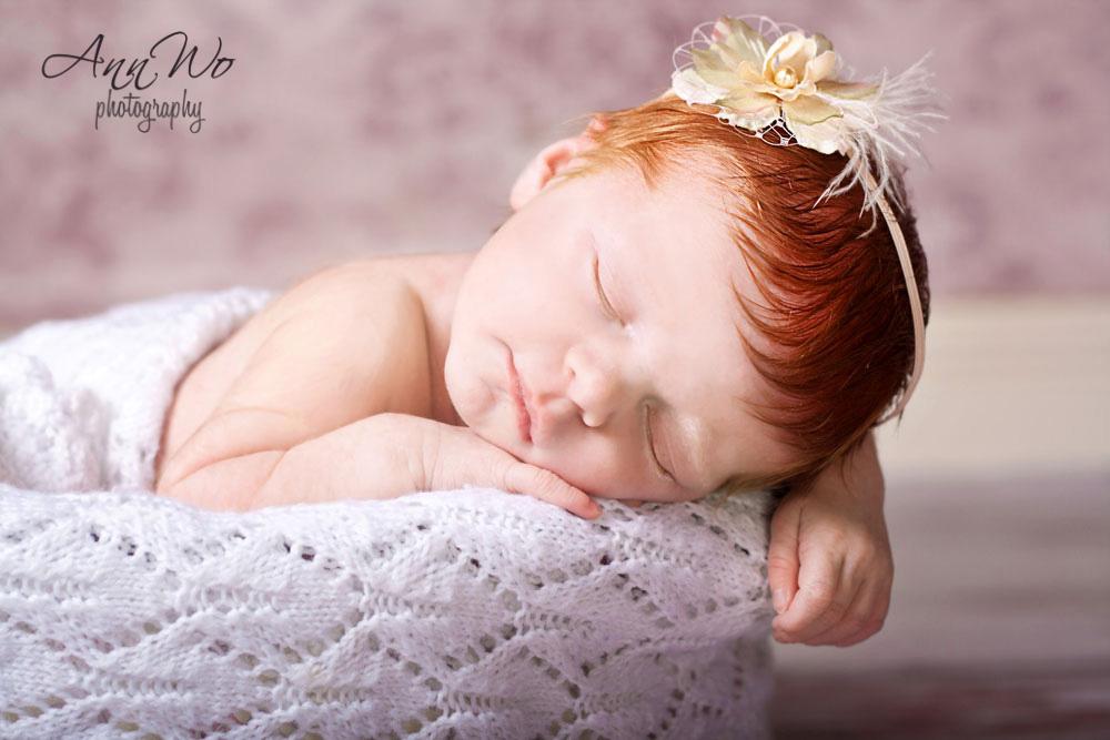 newborn photography ann wo
