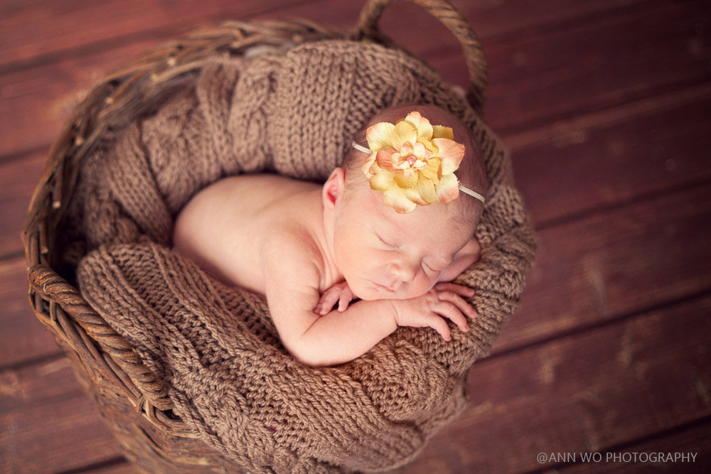 newborn photography baby girl rustic basket yellow flower